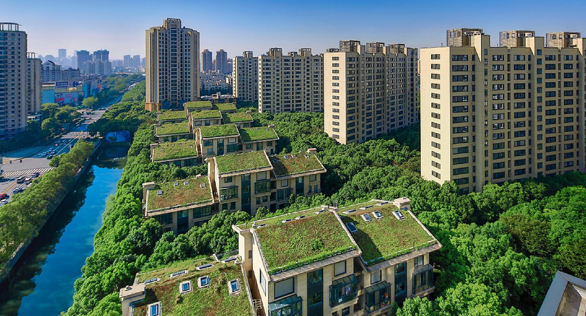Black Forest Residential Shanghai