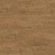 #101 Oak Explorer caramel